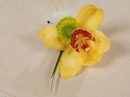 Single Mini Cymbidium Orchid