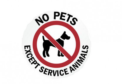Sorry! No Pets Allowed