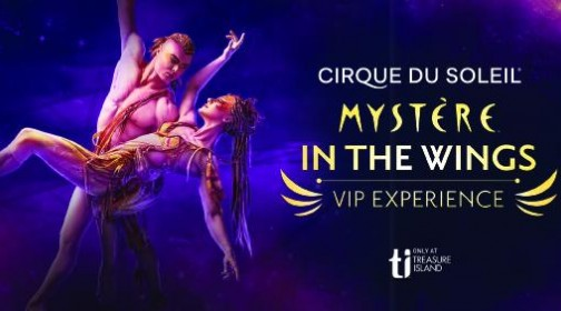 Mystere VIP Experience